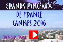 VIDEO 2016 PARTIE 2 Grands Pinceaux de France CANNES