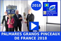 VIDEO 2 ème PARTIE Palmarès Grands Pinceaux de France 2018